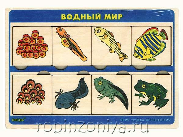 Рамка с вкладышами Чудеса преображений Водный мир купить в интернет-магазине robinzoniya.ru.