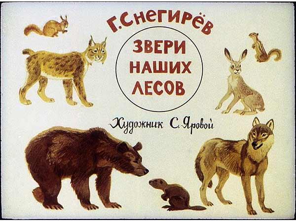 Пленочный диафильм Звери наших лесов купить с доставкой по России
