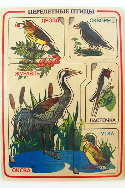 Рамка с вкладышами Перелетные птицы для обучения по Монтессори купить в интернет-магазине robinzoniya.ru.