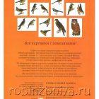 Птицы средней полосы Мир в картинках,Наглядный материал по ФГОС, А4