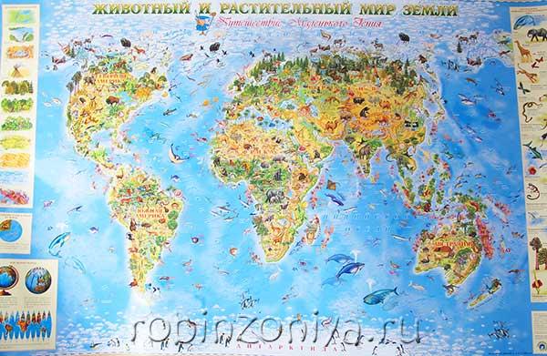 Карта Животный и растительный мир Земли купить в интернет-магазине robinzoniya.ru.