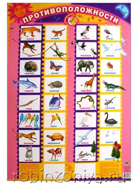 Детский плакат Противоположности купить в интернет-магазине robinzoniya.ru.