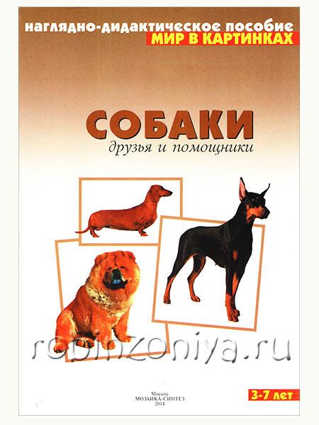 Наглядный материал по ФГОС Собаки купить в интернет-магазине robinzoniya.ru.