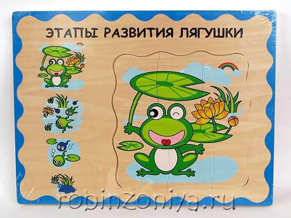 Лягушка многослойный пазл от Мир деревянной игрушки купить с доставкой по России в интернет-магазине robinzoniya.ru.