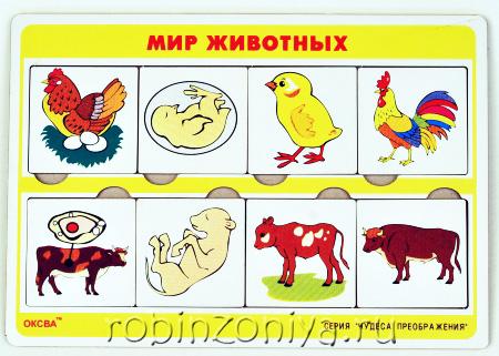 Рамка с вкладышами Чудеса преображений Мир животных купить в интернет-магазине robinzoniya.ru.