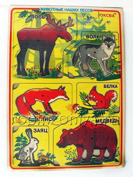Рамка с вкладышами Звери наших лесов купить в интернет-магазине robinzoniya.ru.