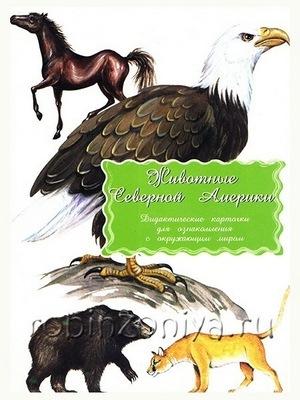 Дидактические карточки Животные Северной Америки