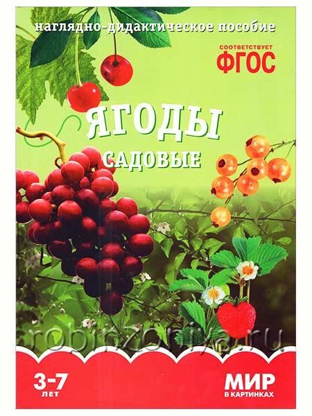 Наглядный материал по ФГОС Ягоды садовые купить в интернет-магазине robinzoniya.ru.