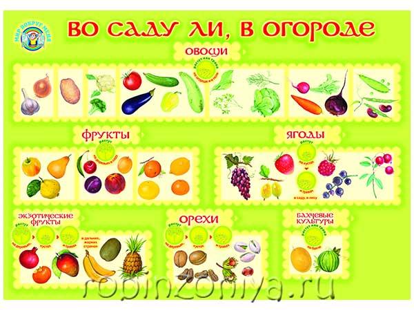 Плакат Во саду ли, в огороде купить с доставкой по России в интернет-магазине robinzoniya.ru.