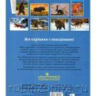 Животные средней полосы Мир в картинках, Наглядный материал по ФГОС, А4