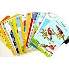 Карточки Тренируем память Робинс