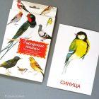 Дидактические карточки Городские птицы