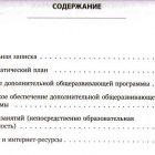 Развивалка.ру. Общеразвивающая программа, Э. Н. Панфилова